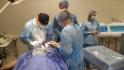 Пластический хирург Вардан Аршакян проводит мастер-класс